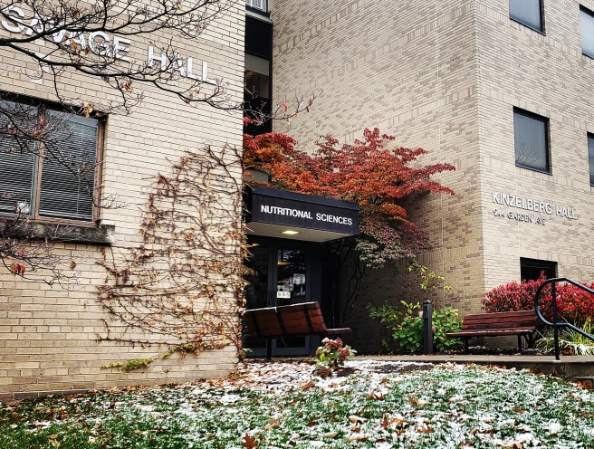 picture of the exterior of Savage Hall in late fall