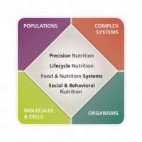 The figure highlights the four primary areas of emphasis in the Division of Nutritional Sciences., which can be investigated at the level of molecules and cells, organisms, populations and complex systems.