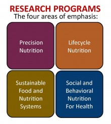 image depicts 4 equal sections as cubes naming the 4 areas of DNS research: top left cube says Precision Nutrition; top right cube says Lifecycle Nutrition; bottom left cube says Sustainable food and nutrition systems for health; and bottom right cube says social and behavioral nutrition