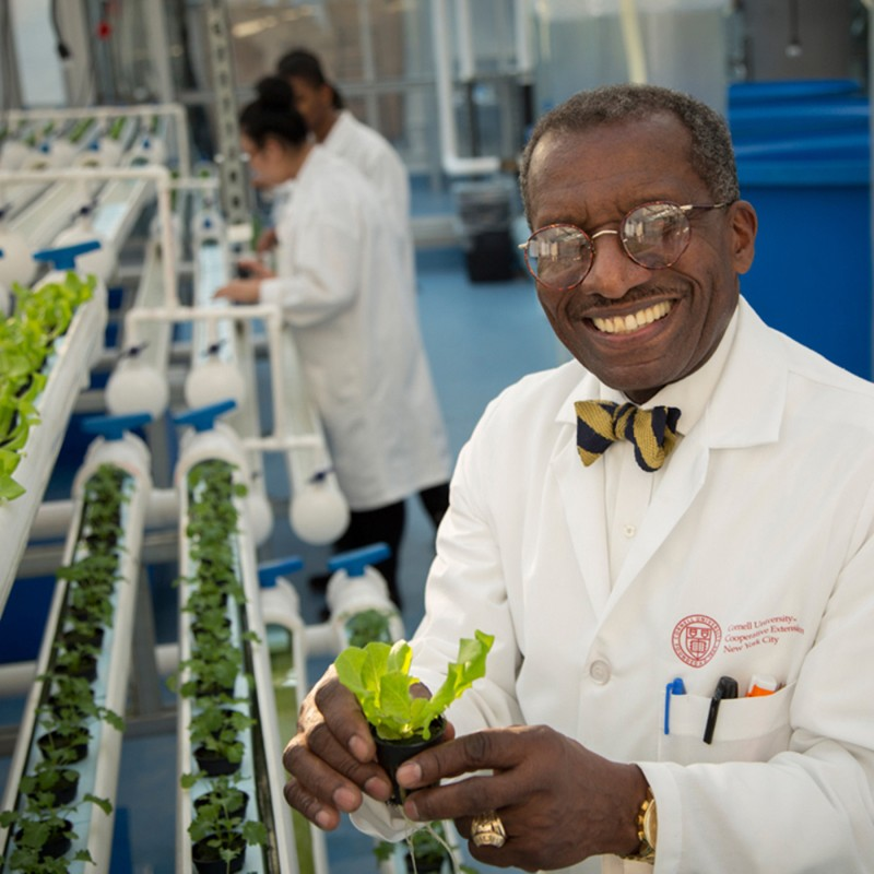 Resource educator at the Food and Finance High School hydroponics lab in NYC.